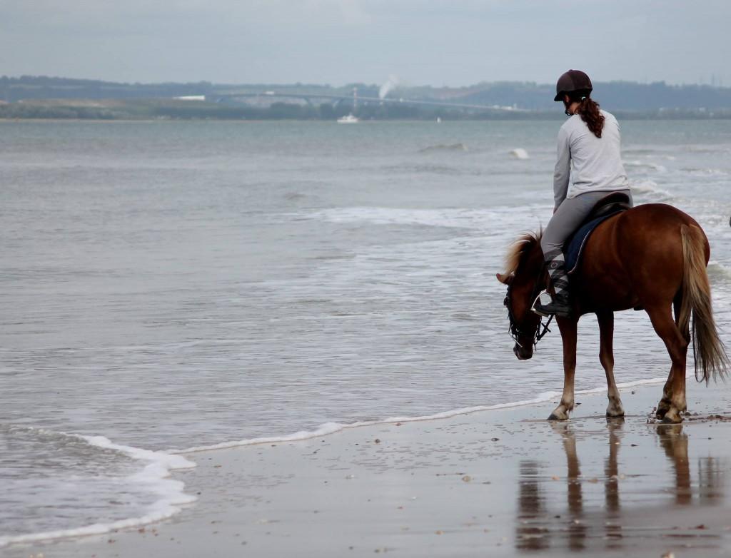 La plage à cheval