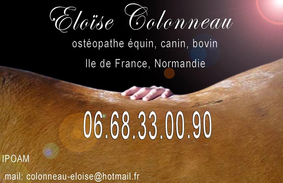 Eloïse Colonneau Ostéopathe