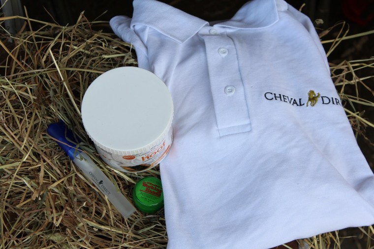 Cheval Direct by The Horse Riders