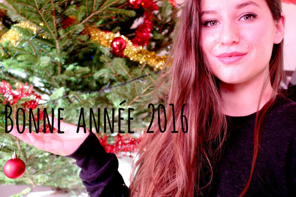 Bonne année 2016 by The Horse Riders