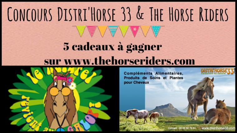 Concours Distri'Horse 33 by The Horse Riders