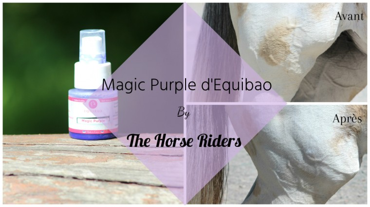 Magic Purple by The Horse Riders