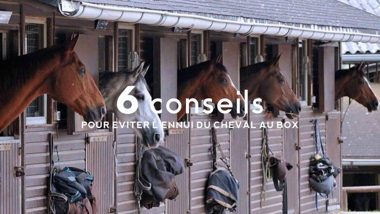Conseils par The Horse Riders
