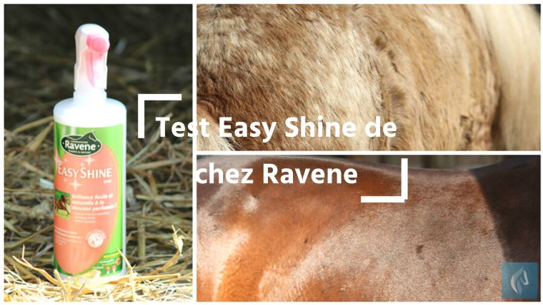 Easy Shine de Ravene by The Horse Riders