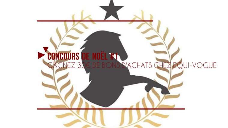 Concours Noël The Horse Riders