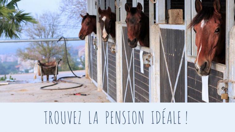 Trouvez la pension idéale !
