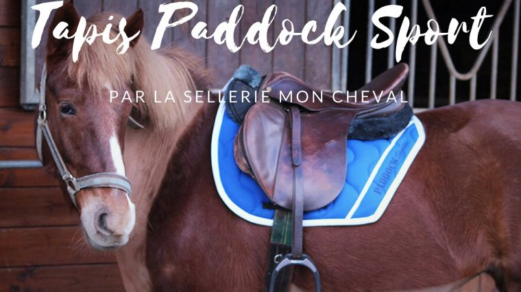 Tapis Paddock Sport by The Horse Riders