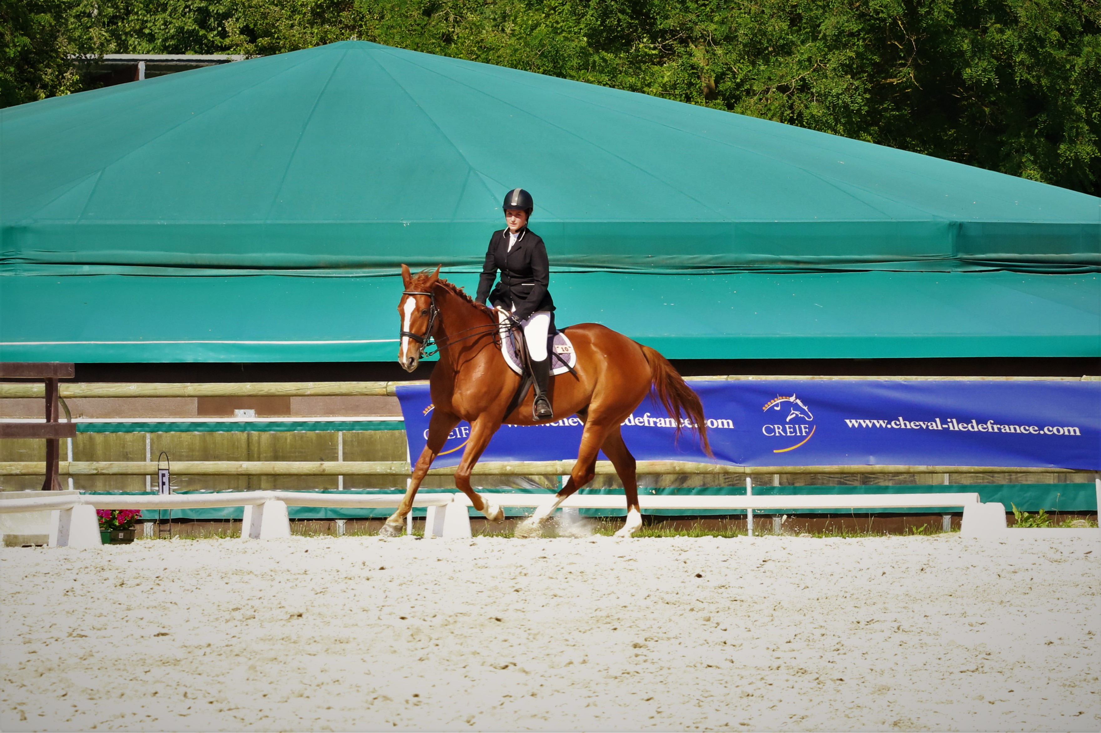 Championnats de France Universitaire d'équitation by The Horse Riders