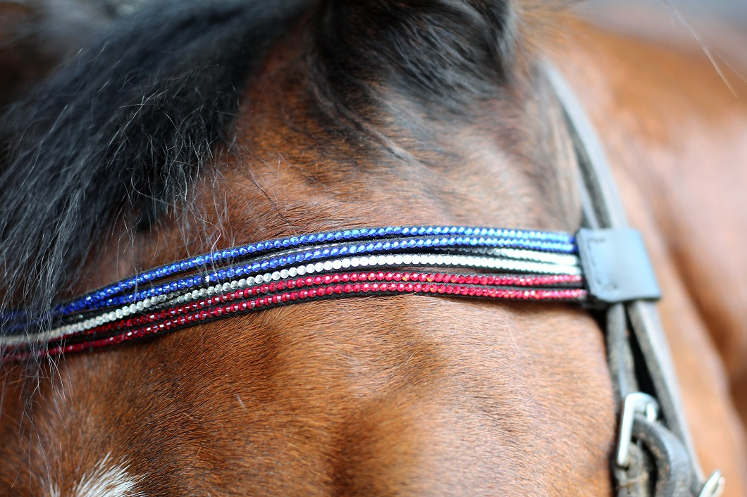 Sellerie Strass by The Horse Riders