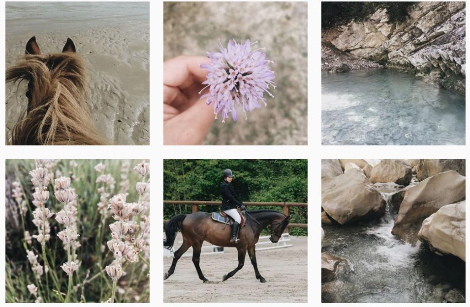 Instagram @thrleblog