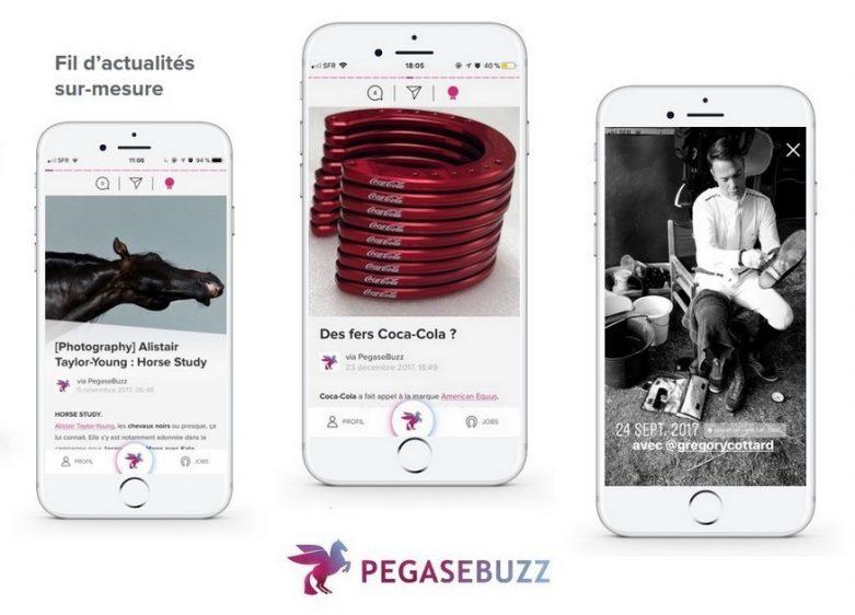 PegaseBuzz application
