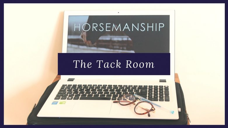 The Tack Room by THE HORSE RIDERS