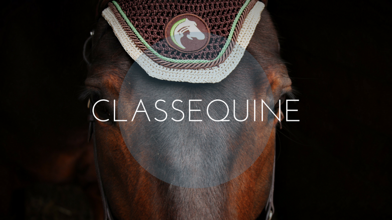 Classequine by THE HORSE RIDERS