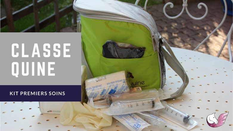 Trousse de premiers soins Classequine by THE HORSE RIDERS